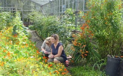 Special Visitors in the Grow Gairden